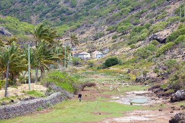 paysage typique de campagne rodriguaise