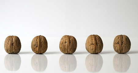 Walnuts in a row. Kitchen decoration.