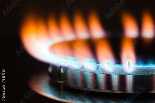 canvas print picture Gas burner flame
