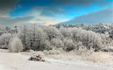 Piękne Szrony © jesiotr9