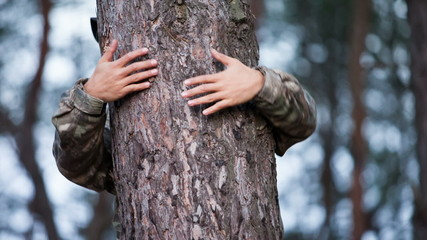 Hands hold pine trunk RAW quality video