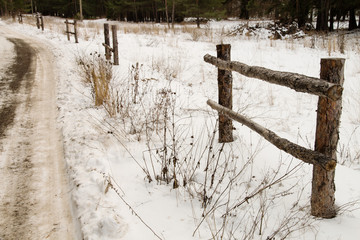 fence on a frosted road in a forest
