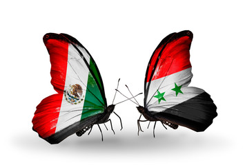 Two butterflies with flags Mexico and Syria