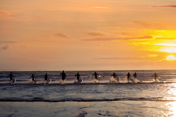 Group of young surfers on the beach, surfin on sunset