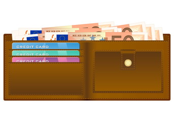 wallet with fifty euro banknote