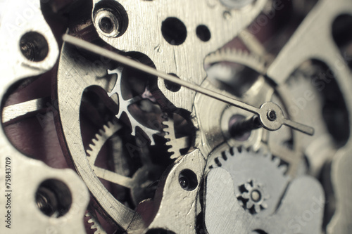 Watch mechanism - 75843709