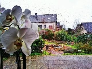 Regenwetter, Blick nach draußen