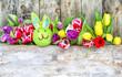 Zdjęcia na płótnie, fototapety, obrazy : oster hase mit tulpen