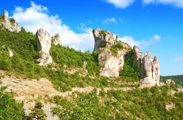 Rochers dans les gorges du Tarn