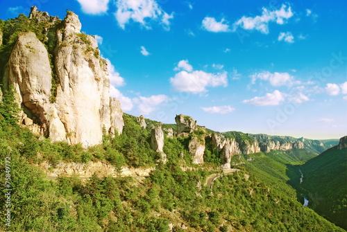 Fotobehang Canyon Les falaises des Gorges du Tarn