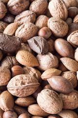 A Mixture of Walnuts, Hazelnuts, Brazil Nuts, Almonds and Pecans