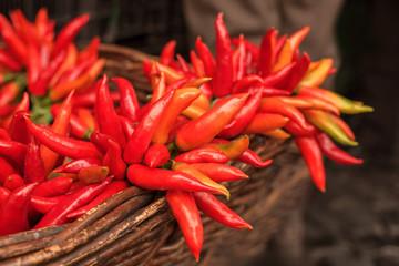 Lots of fresh red hot peperoncinos