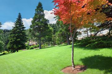 Ландшафтный дизайн в парковой зоне