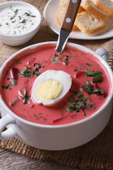 Cold beet soup with egg and herbs closeup. Vertical