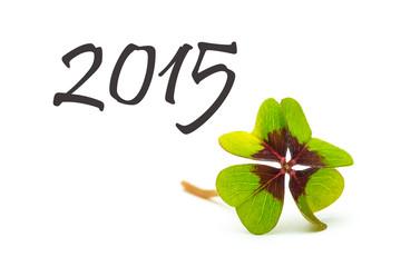 good luck 2015 greeting card