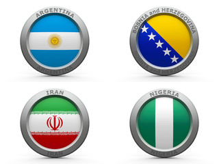 Brazil world cup 2014 group F