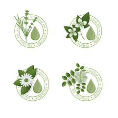 GREEN ESSENTIAL OIL LABELS