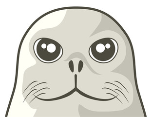 Seal dog face