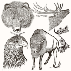 Collection of antique hand drawn animals