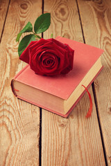 Single rose flower on book over wooden background