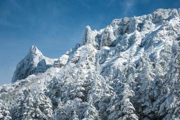 山と樹氷と空