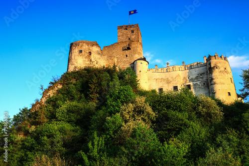 zamek Dunajec - 75868303
