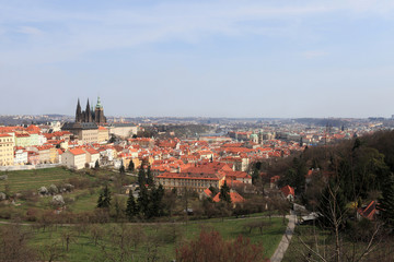 Skyline of St. Vitus Cathedral from Penrin hill