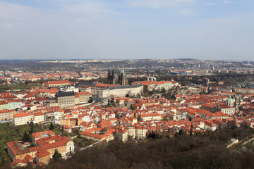 Skyline of St. Vitus Cathedral