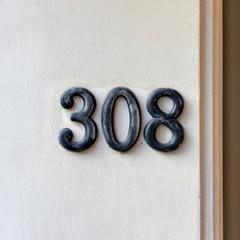 Number 308