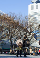 Tokyo Amusement Park #0