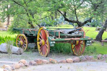 Ox-drawn wagon