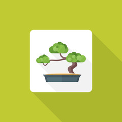 vector colored flat design bonsai tree pot icon with shadow.