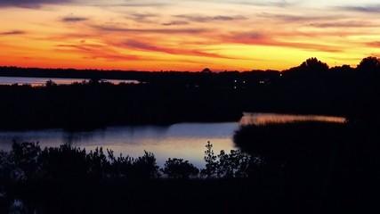 beautiful sunset over florida wetlands