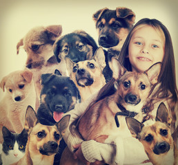 child and a group of puppies
