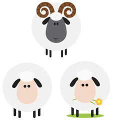 Ram And Sheep Modern Flat Design . Collection Set