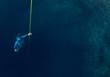 Freediver - 75888100