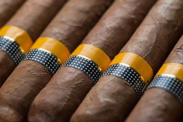 close view on cuban cigars