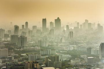 View across Bangkok skyline