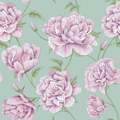 pattern peony flower illustration