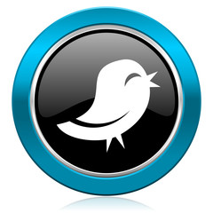 twitter glossy icon