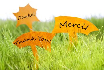 Drei Etiketten mit Danke in unterschiedlichen Sprachen