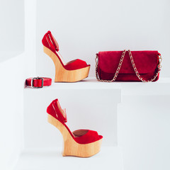 Luxury women's accessories. Bag and strap. Stylish shoes. Red ac