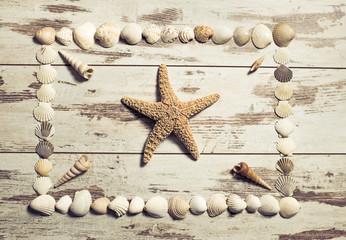 Schätze des Meeres arrangiert auf alten Holzbrettern