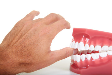 Fingers and teeth
