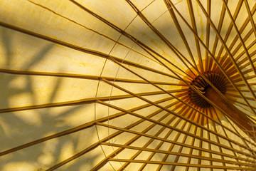 Under umbrella view