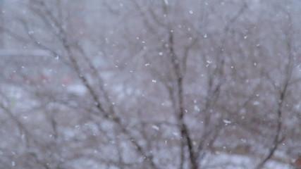 Heavy snow falls, shooting at a minimum shutter speed