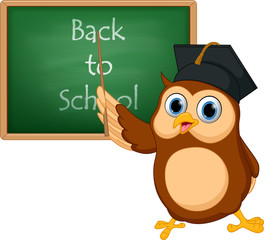 Owl cartoon with chalkboard