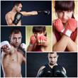 Collage Kampfsport