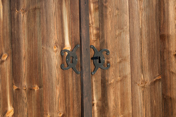 Wooden door and iron lock