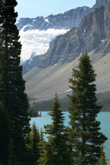 Canadian landscape with Bow lake and forest. Alberta. Canada